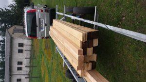 Treibholz für das Floß