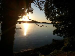 Tollense mit Sonnenaufgang