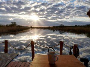 Ein frisch gekochter Kaffee am Morgen vertreibt Kummer und Sorgen, vor allem auf dem Amazonas des Nordens!