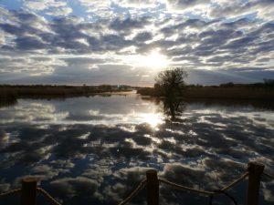 Nebel und Wolken auf der Peene. Ein herrlicher Morgen auf dem neuen Hausboot.